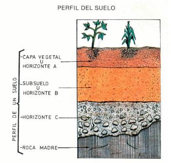 Reforestaci n de microcuencas for Perfil del suelo wikipedia